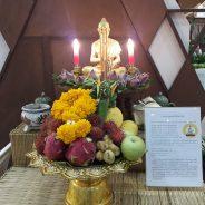 การแพทย์แผนไทยสู้ภัยโควิด – 19